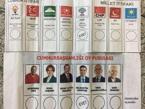 Ağrı'da HDP ve Fransız iş birliği mi?