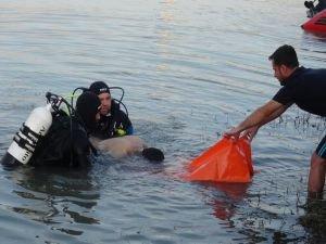 AFAD boğulma vakalarına karşı uyardı