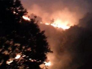 Mardin Nusaybin kırsal alanda yangın
