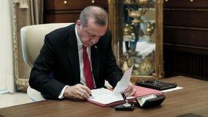 Erdoğan, 14 kanunu onayladı