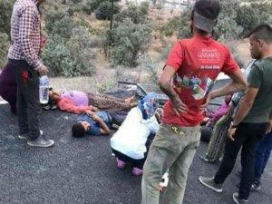 Fıstık işçilerini taşıyan kamyonet devrildi: 3'ü ağır 17 yaralı