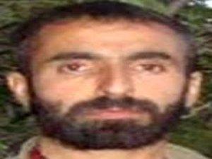 Yeşil kategoride aranan PKK'li öldürüldü