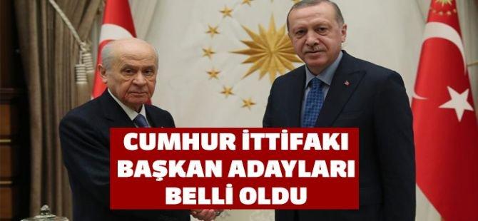 AK Parti ve MHP 21 ilde daha tek adayla seçime girecek