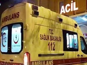 Otomobil yola çıkan ineğe çarptı: Bir yaralı