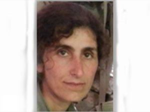 Siirt'te öldürülen 3 PKK'lıdan biri Gri kategoride