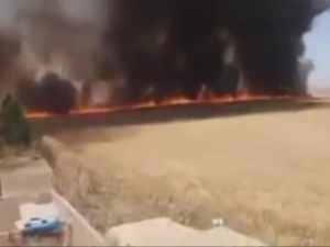Kerkük'te Kürdlere ait ekinler ateşe verildi