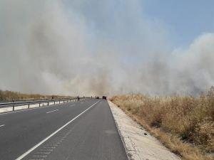 Mayınlı alanda çıkan yangın buğday tarlalarına sıçradı