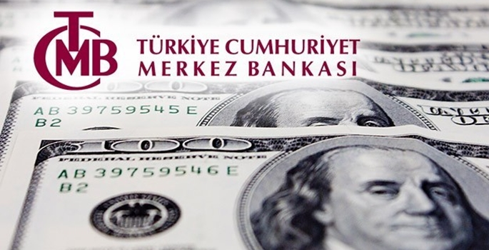 Merkez bankası anket sonuçları