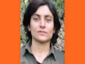 Turuncu kategorideki PKK'lı öldürüldü