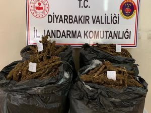 Diyarbakır'da 66 kilo esrar ele geçirildi