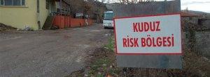 Mersin'de o mahalleler 'kuduz risk bölgesi' ilan edildi