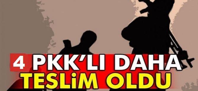 İçişleri Bakanlığı: 4 PKK'lı teslim oldu