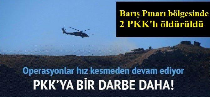 Barış Pınarı bölgesinde 2 PKK'lı öldürüldü