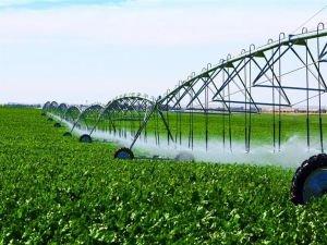 Türkiye'nin en büyük tarım işletmesi Ceylanpınar'da 60 bin dekar arazi sulamaya açılacak