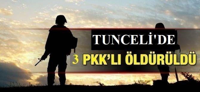 Tunceli'deki hava destekli operasyonda 3 PKK'lı öldürüldü