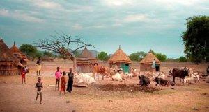Etiyopya Gambela bölgesinde silahlı saldırı:170 ölü