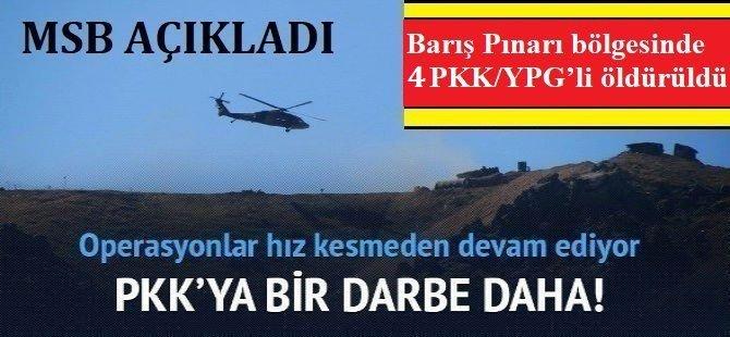 Barış Pınarı bölgesinde 4 PKK'lı öldürüldü