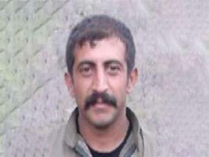 Turuncu kategoride aranan PKK'lı yakalandı