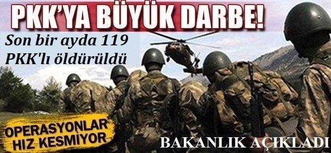 MSB son bir ayda 119 PKK'lının öldürüldüğünü duyurdu