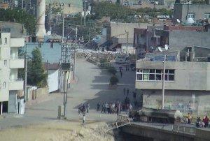 Nusaybin'de 2 kişi gözaltına alındı