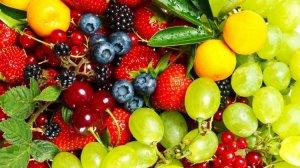 Meyve ve sebzeler hayat veriyor!