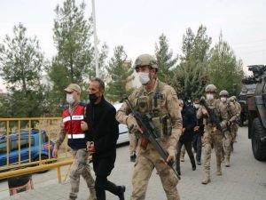 PKK operasyonunda 6 tutuklama