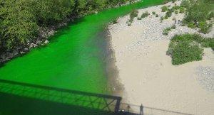 Fransız çevreciler, 12 nehri dikkat çeksinler diye yeşile boyadı