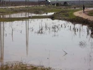 Siyonist işgal rejimi Filistinlilerin tarım arazilerini sular altında bıraktı