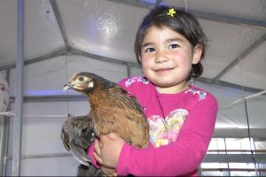 Adana'da Kırsal Kalkınma projesi dahilinde tavuk çiftliği kuruldu