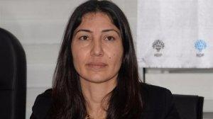 HDP'li vekilin eşi Mehmet Birlik Diyarbakır'da gözaltına alındı