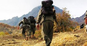 PKK'lılar Şırnak'ta İş makinelerini kundaklandı