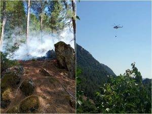 Bakan Pakdemirli'den Adana'daki orman yangınına ilişkin açıklama
