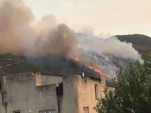 Osmaniye'de orman yangını: Bazı evler tahliye ediliyor