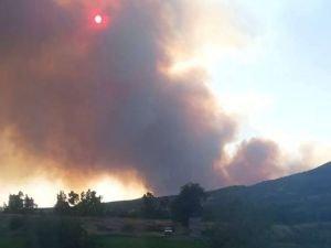 Osmaniye'deki yangını söndürme çalışması devam ediyor