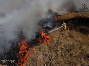 Adana'daki yangın 2 ilçeye daha sıçradı