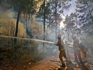 4 ilde orman yangınlarıyla mücadele sürüyor