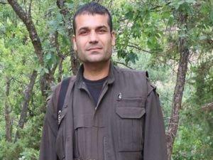 PKK'nın dış ilişkiler sorumlusu öldürüldü