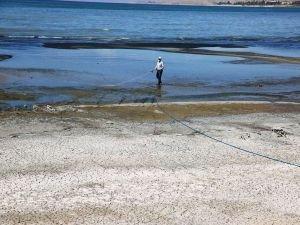 Van Gölü çevresinde haşerelere karşı ilaçlama çalışması gerçekleştirildi