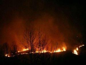 İran'da orman yangını