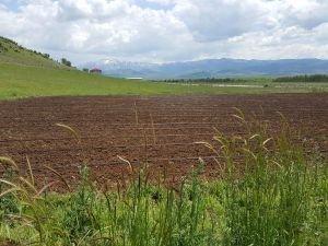 Bingöl ova köylerinde susuzluk