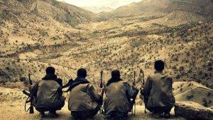 Eylem hazırlığında PKK'lı yakalandı
