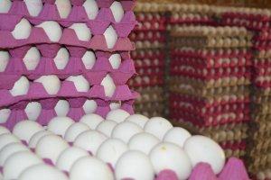 Arz ve sıcaklar yumurta fiyatını etkiliyor