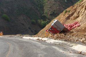 Soğan yüklü kamyon kaza yaptı