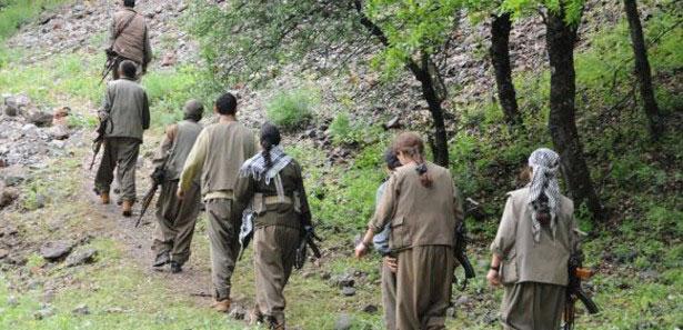 Siirt Emniyet Müdürü PKK'ya kamu görevlileri destek veriyor