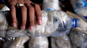 Pet şişelerin içine sıkıştırılmış papağan kaçakçılığı