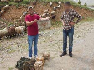 Kaçak keklik avlayanlar yakalandı
