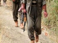 Şırnak'ta 4 PKK'lı teslim oldu