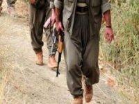Biri gri listede 2 PKK'lı teslim oldu