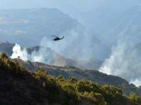 Lice'de Öldürülen PKK'lılardan 4'ü Gri Kategoriden