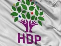 HDP Bolu İl Eş Başkanı Günaydın tutuklandı